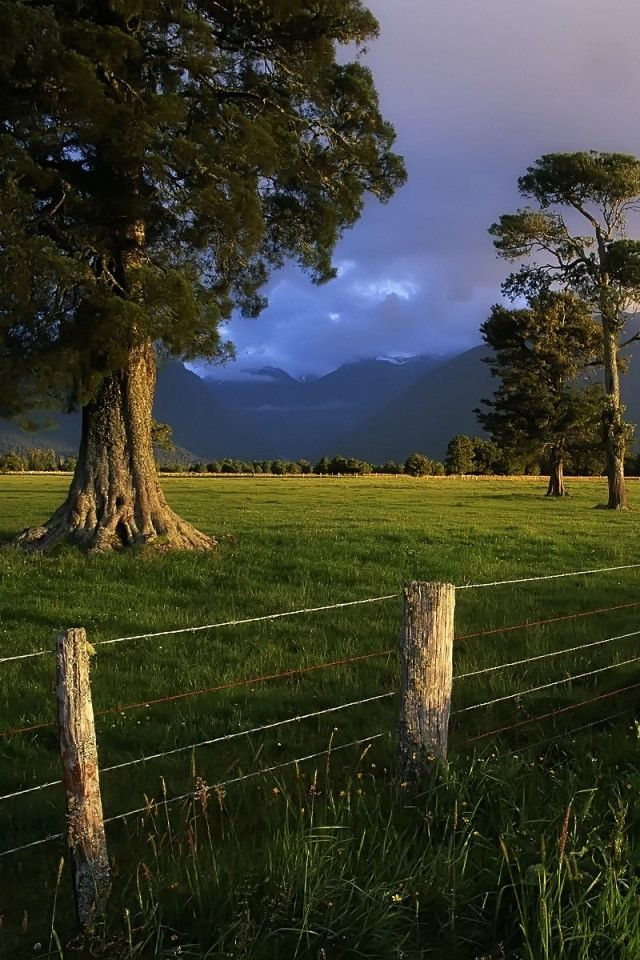 South Island landscape, New Zealand. Yes, it's that beautiful.