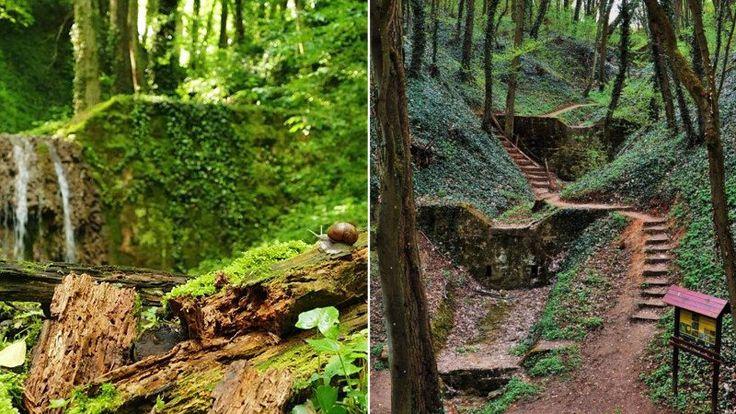 Haluzická tiesňava je pomerne málo známym miestom na Slovensku, ktoré sa však oplatí navštíviť. Neustále sa rozširujúca tiesňava totiž môže každým rokom vyzerať celkom inak.