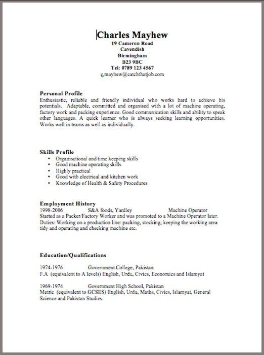 190 best Resume Cv Design images on Pinterest Career consultant - examples of a basic resume