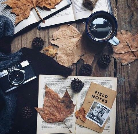 Autumn flatlay with leaves and camera.