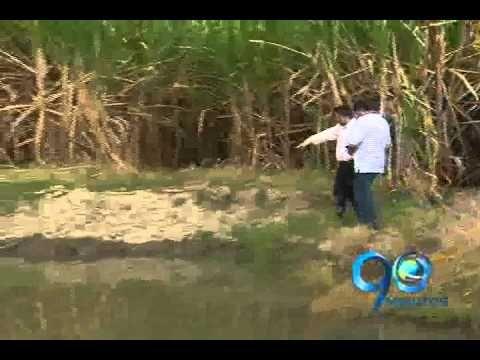 Marzo 13 de 2012. Informe Especial: Saqueo a la Cultura Malagana