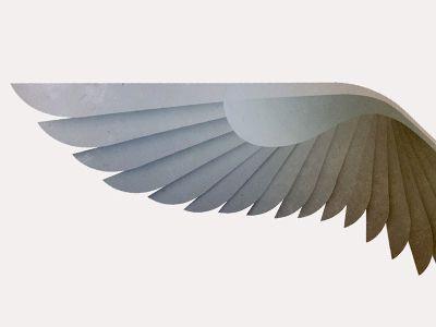 หัดวาดปีกนกกัน