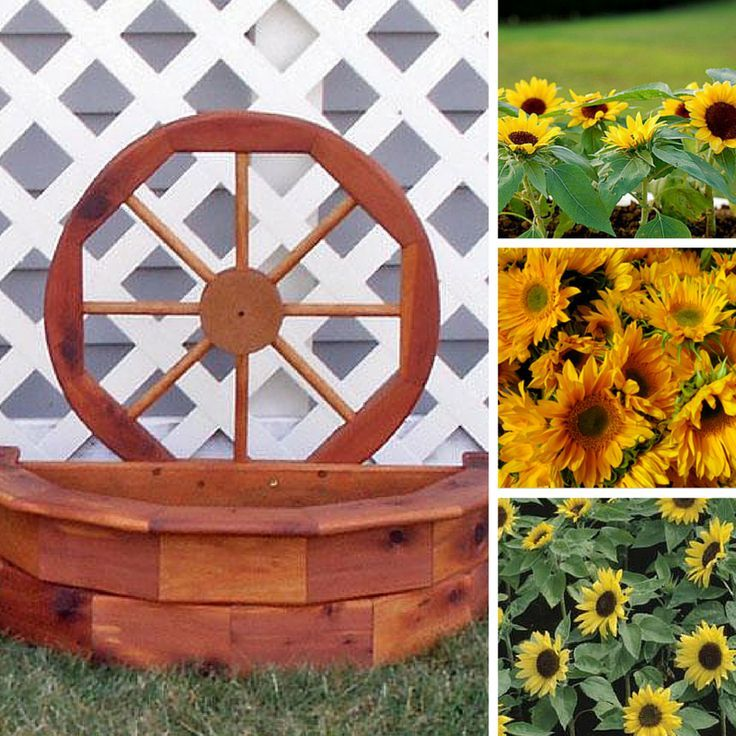Hello, Sunshine! The Seasonal Planter by DutchCrafters