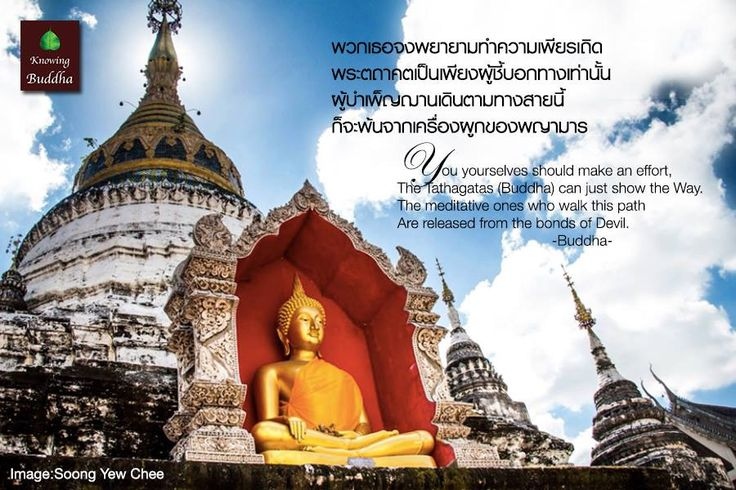 For more of Buddha's teaching at FB: Do and don't on Buddha. Knowing Buddha works to protect and guard Buddha and Buddhism alongside 5000s.org to protect Buddhism for as long as 5000 years. Please visit www.5000s.org