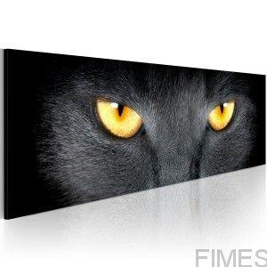 https://www.fimes.pl/pl/p/Obraz-Look-into-my-eyes.../2680