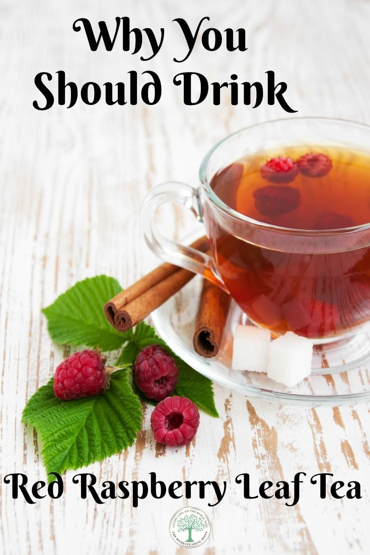 Chinese herbs tea stress anxiety - Learn The Benefits And Why You Should Include Red Raspberry Leaf Tea In Your Daily Diet