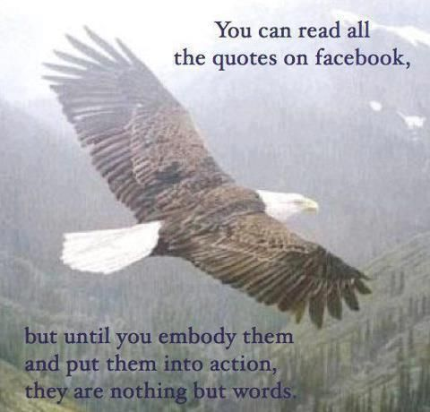Apply them...   www.facebook.com/loveswish: Eagle, Truth, Facebook, Action, Wisdom, Inspirational Quotes