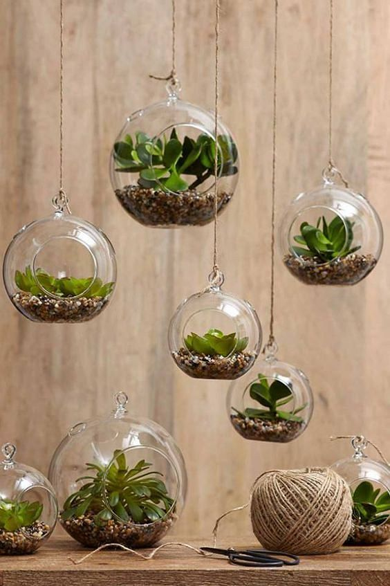 Kto powiedział, że kwiaty muszą stać na parapetach? Szklane ogródki mogą z powodzeniem wisieć.