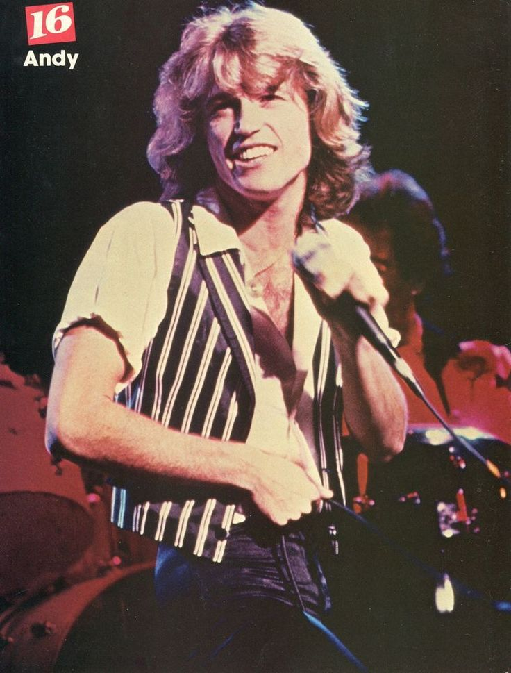 Andy Gibb Shaun Cassidy Double Pinup Clipping Concert Bee