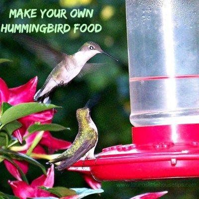 Make your Own Hummingbird Food Recipe #DIY #Recipe