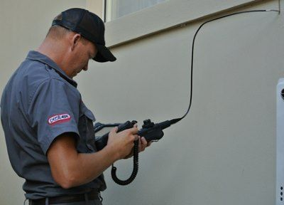 Ten Reasons To Hire A Pest Inspector Before Hiring To Control.
