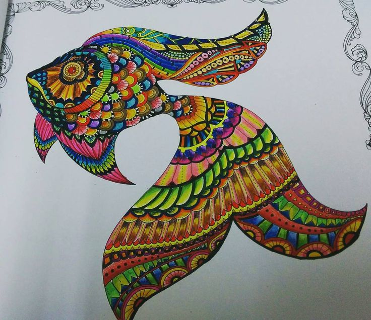 LostOcean 1st Try Colorful Fish Color BoardsColoring BooksAdult