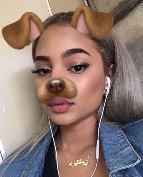 148 best dog filter images on pinterest follow me