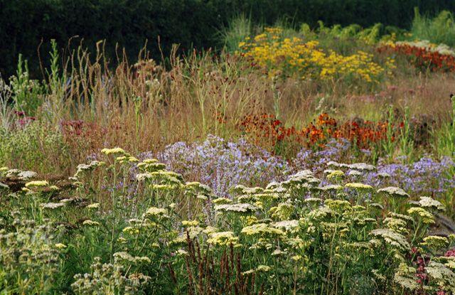 1000 images about flower garden iv on pinterest for Kingsbury garden designs
