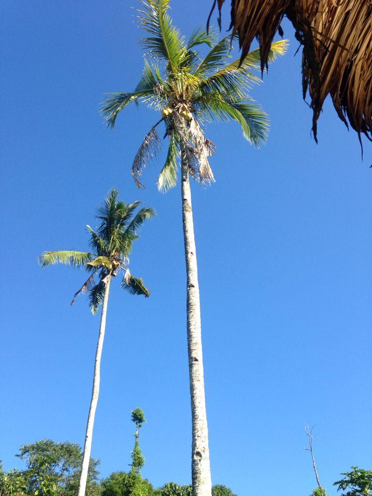 Beautiful blue sky..