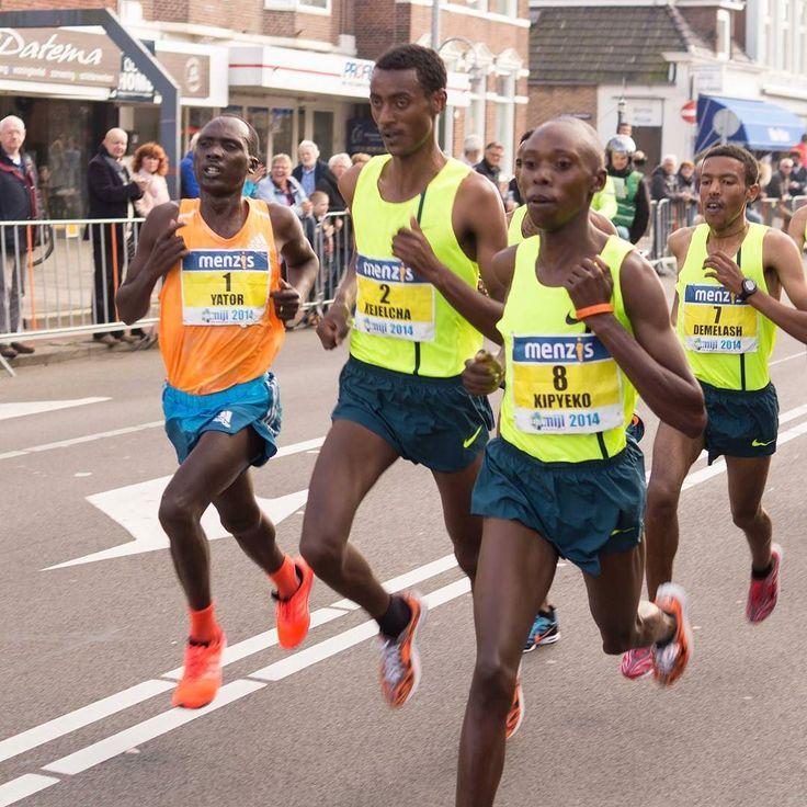 The Best running events in the UK this summer        1. Isle of Man half marathon 22 July 2. Great Gorilla Run London 22 September. 3. Sumo Run London 23 June 4. Torbay Half Devon 24 June 5. The Indian Queens Half Cornwall 5 August http://amzn.to/2bhQP8u #racing #trainig #runningaddict #runninglife #runforfun #runforhealth #runforfitness #trailrunning #thegreatoutdoors #ukrunchat #nutrition #runbuddies #indiarunning