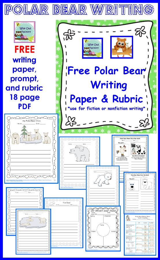 Free polar bear writing paper to accompany ANY polar bear unit or book, or use the children's book KNUT:  HOW ONE POLAR BEAR CAPTURED THE WORLD