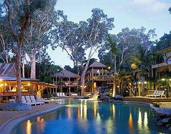 treetop resort port douglas australia