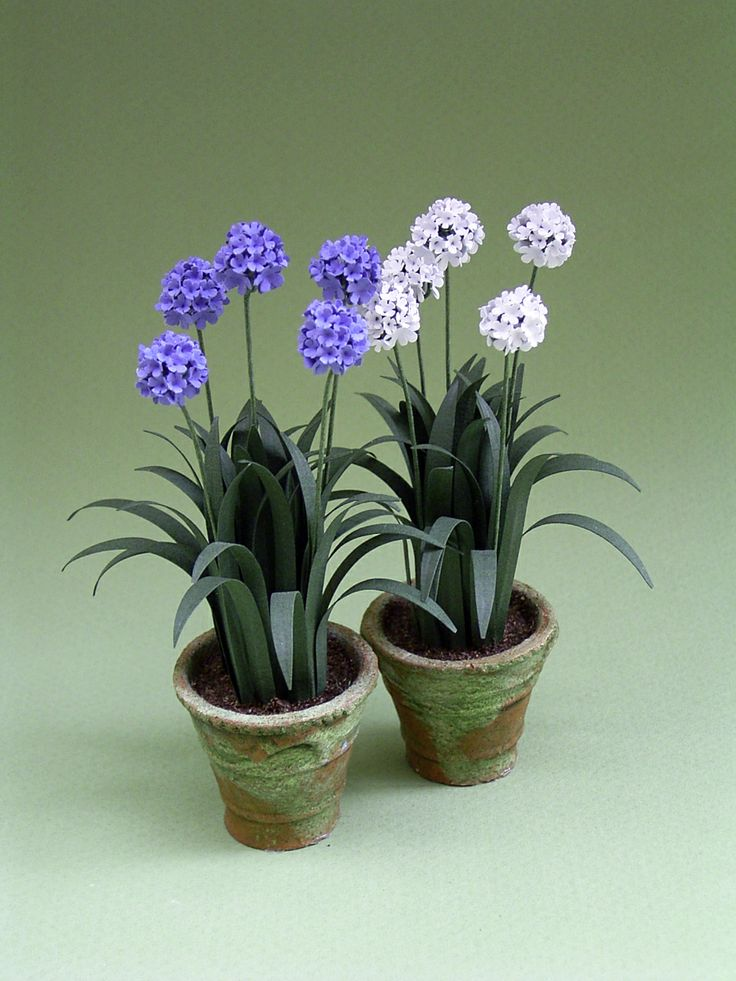 The Miniature Garden: Garden Plants