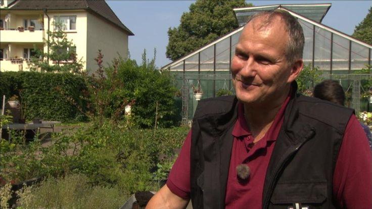 Helge Masch vom Botanischen Sondergarten in Wandsbek hat ganz besondere Lieblinge: Giftpflanzen. Und die müssen gewürdigt werden, findet er.