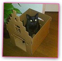 Huisje voor je kat - Girlz.nl