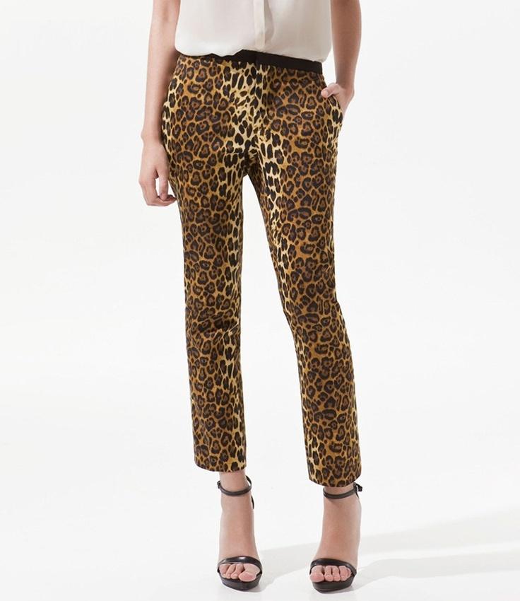 Leopard Print Women Ankle Pants Brown APL001
