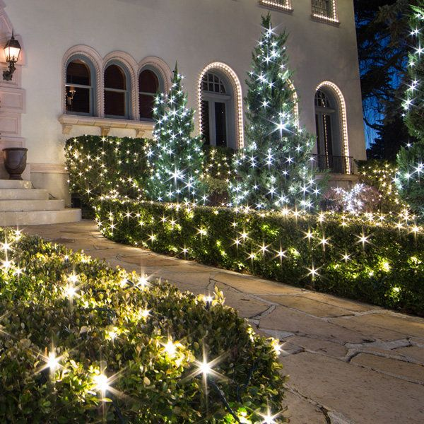 outdoor net lights for bushes new house designs