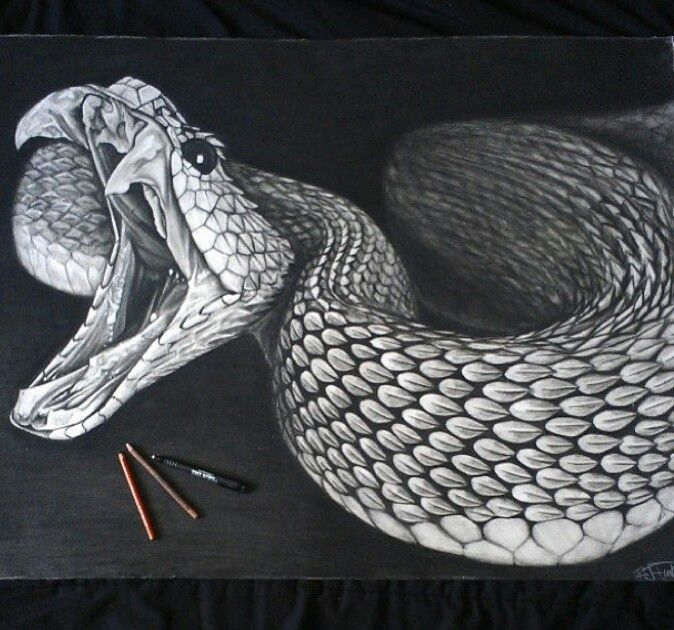 It is an image of Amazing Snake Skin Drawing Easy