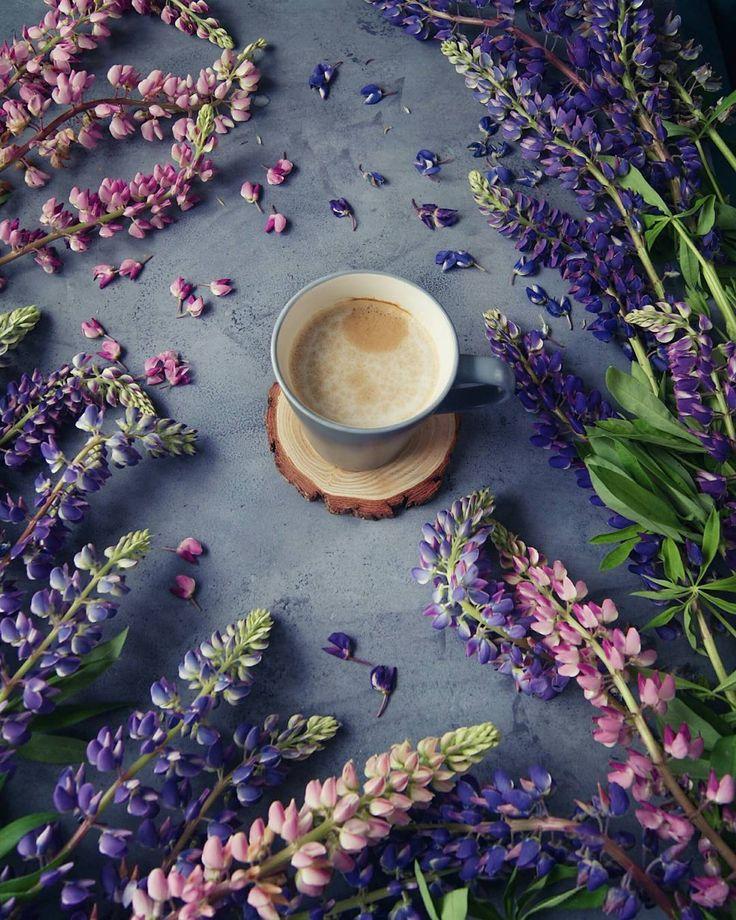 """Люпиновое утро.  Интересно,я одна такая ненормальная и только у меня возникают ассоциации с """"Гарри Поттером"""", когда я слышу название этого цветка...#профессорлюпин #coffee #coffeelover #goodmorning #morning #food #foodphotography #feedfeed #flowers #lupine #vsco #фудпорн #фудстаграм #цветы #люпины #кофе #кофеман #доброеутро"""