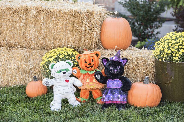 Trick-or-Treat with our newest trio! Mummy Teddy, Bear-O-Lantern, and Night Sky Kitty are at our Haunted Workshop.