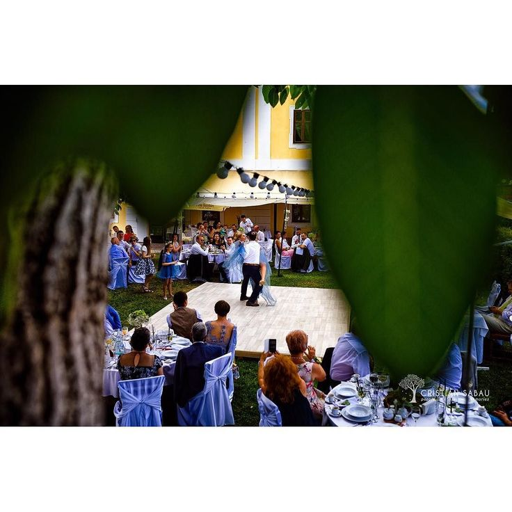 Today's Crazy Wedding Day Preview | www.cristians.ro . . #weddingday #huffpostido #instawed #instapic #instagood #instalove #destinationweddingphotographer #romaniawedding #Transylvania #Romania #nikon #d750 #nikond750 #bride #pin #beautiful #groom #castelhaller #ig_romania #targumures #samedayedit #thesecondshot #aotss #tree #leaves #wed_stars #firstdance #upinthetree