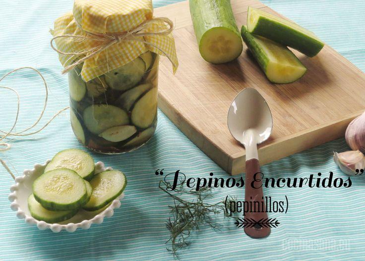 Pepinos Encurtidos o Pepinillos | Recetas de Cocina Fáciles, Ligeras y Rápidas