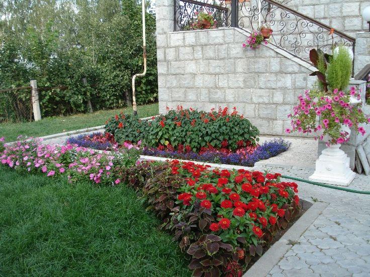Красивые клумбы с розами своими руками на даче фото