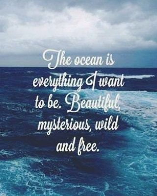 80 Awesome Beach Quotes For Summer <a class=