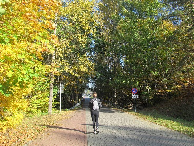 Droga do Mrongoville Miasteczka westernowego.  www.it.mragowo.pl