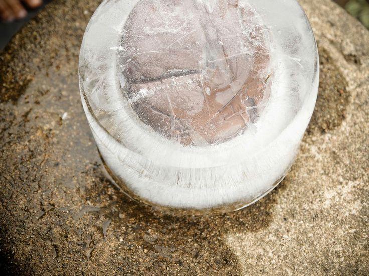 """Marion Chatel-Chaix: Hibernatus """"Remontant les temps immémoriaux, enfermée dans la glace, la forme géologique se dévoile au mangeur patient. Autre temps, autre temporalité. La gangue glacée qui enferme la cabosse fond lentement et retourne au court de l'eau illustrant le cycle immuable des éléments."""" Marc Brétillot"""