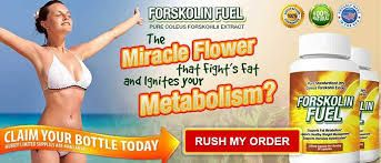 Forskolin Fuel Diet Pills Forskolin Fuelis a dietary supplement that is made from standardized 20% ... Still, I don't consider this brand as aside effects-free diet pill as results varies http://able2know.org/user/forskolinfuel/