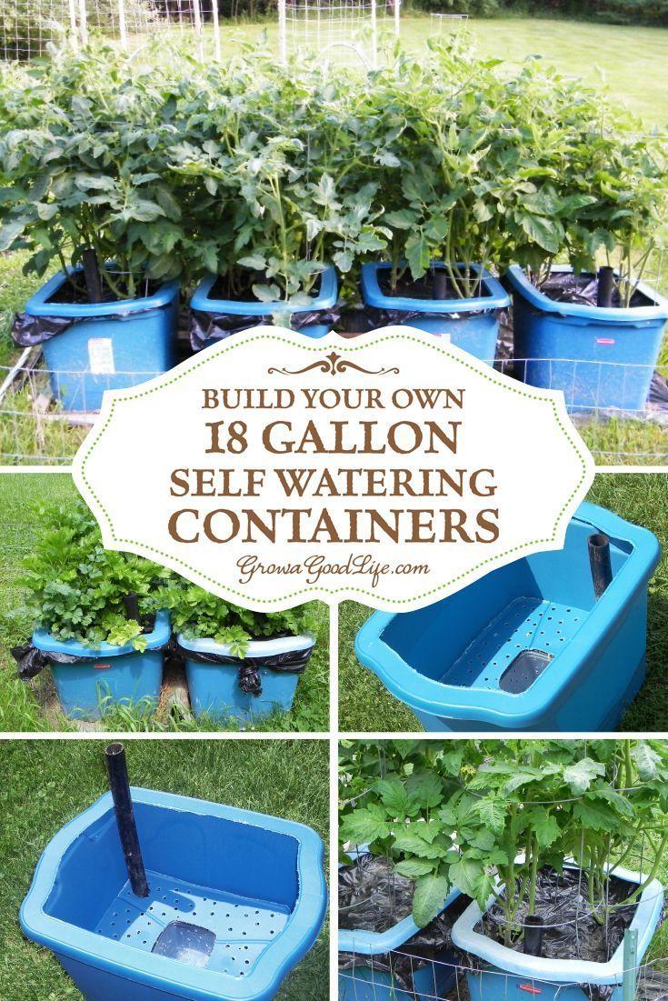 Bauen Sie Ihre Eigenen Wasserbehalter In 2020 Selbstbewasserungstopfe Gartencontainer Container Garten