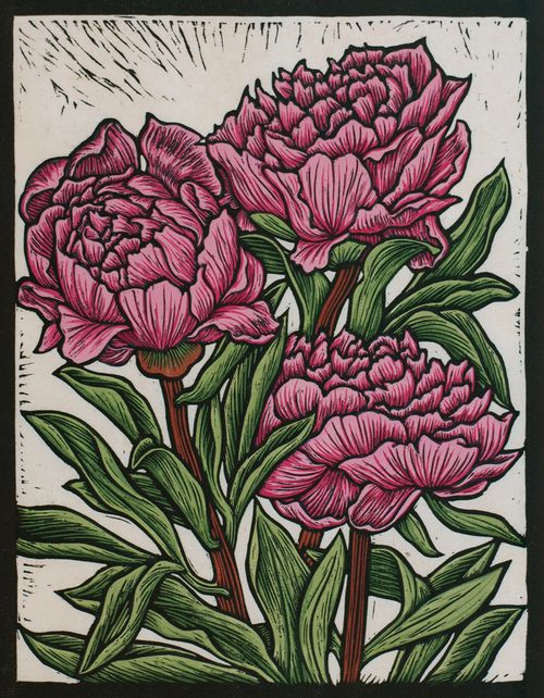Peony Rose29.5 x 23 cm    Edition of 50Hand coloured linocut on handmade  Japanese paper.   Rachel Newling.