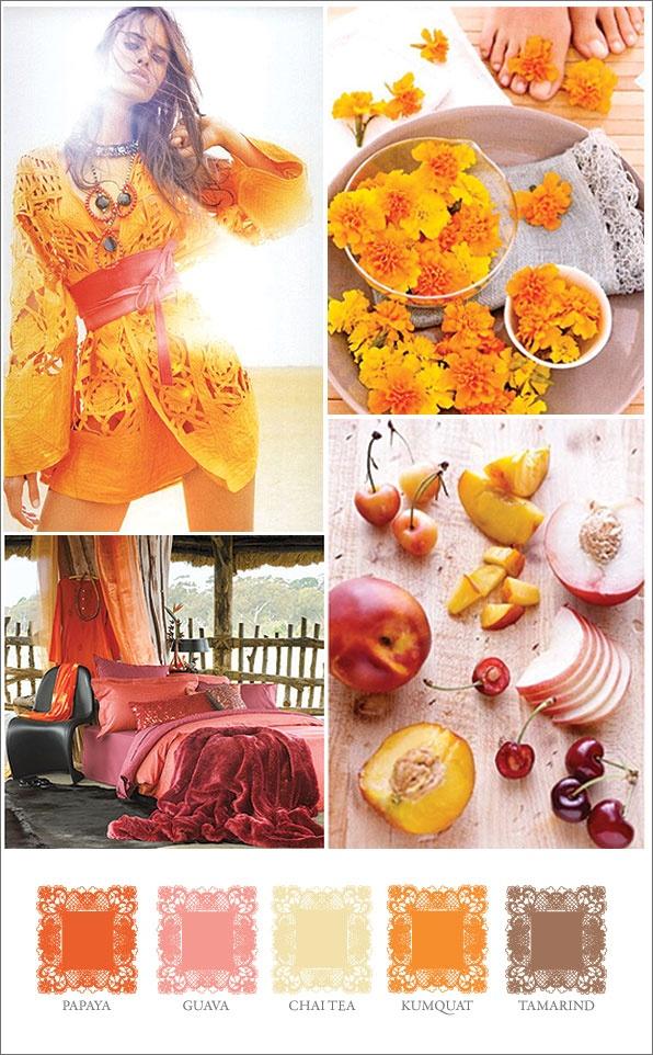 sape orange shweshwe moodboard - 596×962