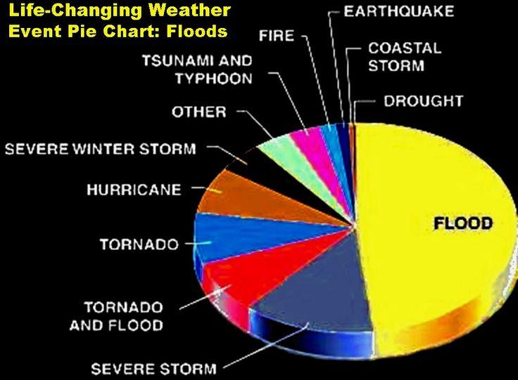 Global warming effects | Global warming | Pinterest