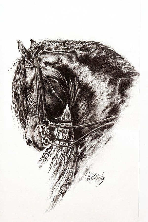 Friesian+Horse+Drawings | Deixe uma resposta Cancelar resposta