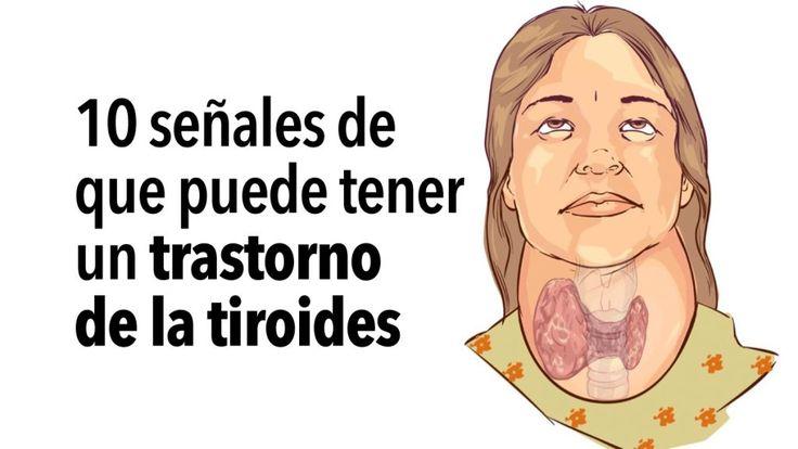 La glándula tiroides es una glándula a la que muchas personas no prestan especial atención. El cerebro, los pulmones, el corazón, el hígado y otros órganos vitales generalmente demandan mayor preocupación. Sin embargo, la tiroides es una glándula que es enormemente importante para nuestra salud. La glándula no mide más de 5 centímetros y se encuentra en la parte frontal de la garganta, ligeramente por debajo de la manzana de Adán. Consiste en dos lados (lóbulos) que se encuentran en ambos…
