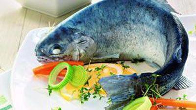 Блюда из форели - форель голубая. Праздничный стол  Блюда из форели идеально подходят на праздничный стол. Форель голубая - типичное блюдо из форели в немецкой кухне.  Голубая форель - это блюдо для гурманов. Настоящее классическое рыбное блюдо немецкой кухни.