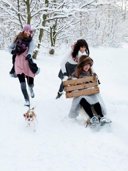 winter ❄︎ nature