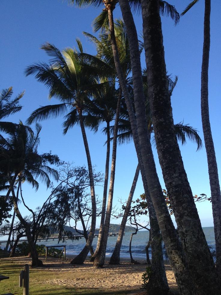 Palm Cove - North Tropical Queensland - Australia
