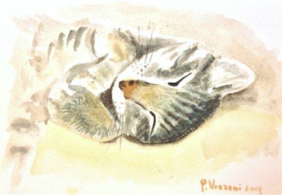 Cat sleeping - watercolour cm 24x17