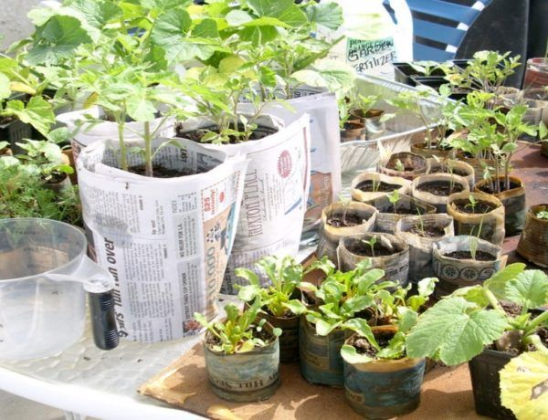 8 Incredible DIY Tricks To Make Garden Pots From Waste