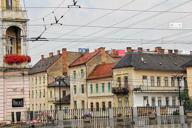 Varză a la Cluj