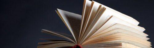 Rentrée littéraire. Le feuilleton d'Emmanuelle de Boysson